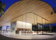 独家|夜游Apple Park:暗幕萤火之森般的建筑之美