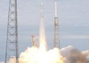 """NASA送人类""""小蝌蚪""""上国际空间站 研究太空生娃?"""