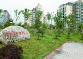北京朝阳十八里店乡:退出低端产业 建设绿地公园
