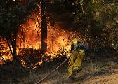 美加州火灾仍有数百人失联 当局动员囚犯救火
