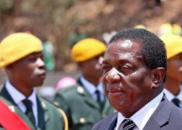 外媒:津巴布韦前副总统将于48小时内接任领导人