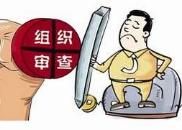 对抗组织调查 余江县人社局原主任科员剪碎3张房产证