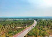 安徽合肥:江淮分水岭上的6万亩林海氧吧