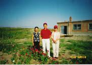 超仁妈妈|科尔沁沙地变人间天堂 她18年治沙只为见证奇迹
