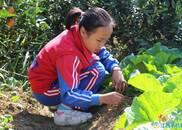 萍乡12岁女孩照料曾祖父母感动乡里