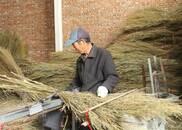 嘉祥前杜村:小扫帚激活富农密码 扫出过亿年产值