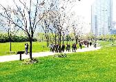 韩正:生态环境没有替代品 上海将增加绿色生态空间
