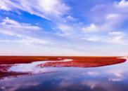 东营:黄河入海,或血液里的抒情