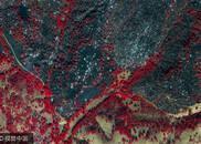 美国加州山火灾区红外卫星图超震撼|组图