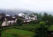 中国乡村治理的历史底色