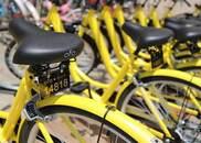 合肥市人大代表胡红琼:加强对共享单车管理