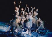松山芭蕾舞团经典芭蕾舞剧照