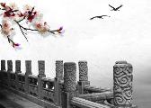 文化发展开新局:十八大以来的文化改革发展新实践