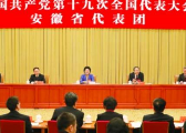 刘延东参加安徽代表团讨论