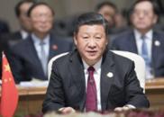 习近平将主持中非合作论坛北京峰会