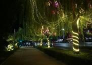 河南淇滨:满城的璀璨夜色让游人沉醉