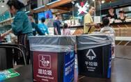 上海的垃圾分类会让塑料垃圾污染更严重吗?