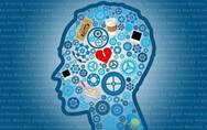 大脑研究有了新突破,未来的记忆也能私人定制了吗?