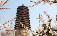 京城十座最美佛塔 你去过几个?