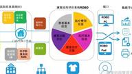 """中国首个康复结局管理系统在第十五届""""618""""展出"""