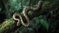 科学家首在琥珀化石中发现近1亿年前蛇类
