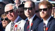 英国哈里王子:全家都不想继任王位