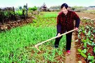 82岁婆婆捐出万元卖菜款 资助贫困留守学生