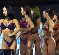 世界健美健身精英排位赛 满屏弥漫荷尔蒙的味道