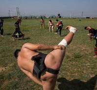蒙古大力士的相扑梦 向往去日本当练习生
