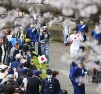 东京奥运会火炬传递第6日 路旁樱花盛开如画