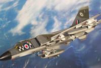 歼-8换上英军涂装 彰显贵族范