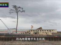 重生之路——日本311大地震六年纪