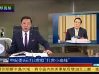 """何亮亮:中纪委9天打3只虎 掀""""打虎小高峰"""""""