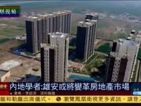 内地学者:雄安或将变革房地产市场