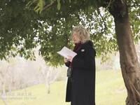 《春天读诗·3》:布兰达·希尔曼《花现》