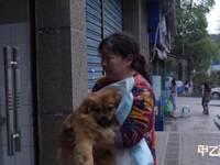 救狗之惑 女子为救猫狗倾家荡产