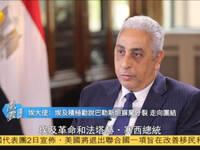 专访埃及驻华大使马格杜布