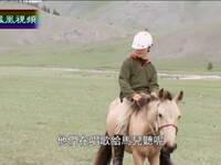 澳大利亚男孩在蒙古草原上的奇遇
