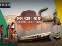 恒河水畔巨象梦——印度建国65周年特别观察