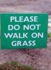 解惑第57期:该怎么劝一个好人不要踩草坪