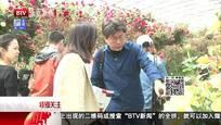 全球首座月季博物馆亮相北京 月季大会网络购票平台开通