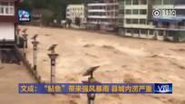 市民手机记录浙江暴雨