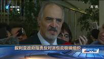 叙利亚政府指责反对派包庇极端组织