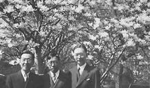 趙元任、胡適:二戰期間美國陸軍特訓班中的中國學者