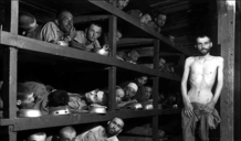 自告奋勇去卖身?纳粹是如何在集中营里办起妓院的