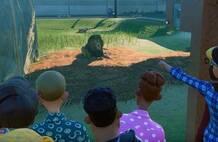 《动物园之星》新DLC发布 鬼才主播开门营业花式翻车