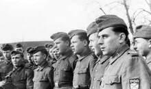 """二战初期苏联百姓为何将侵略者德军幻想成""""救星"""""""