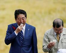 日本众议院选举竞选开始 安倍在集会大吃饭团