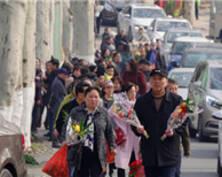 这个双休,南京76万人涌向各大墓园祭扫(组图)