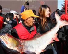南通海安里下河捕鱼节开幕 游客感受水乡年味